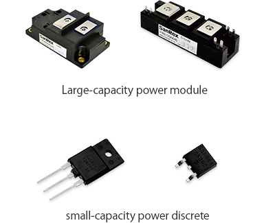 Large-capacity power module, small-capacity power discrete